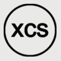 XCS Group logo