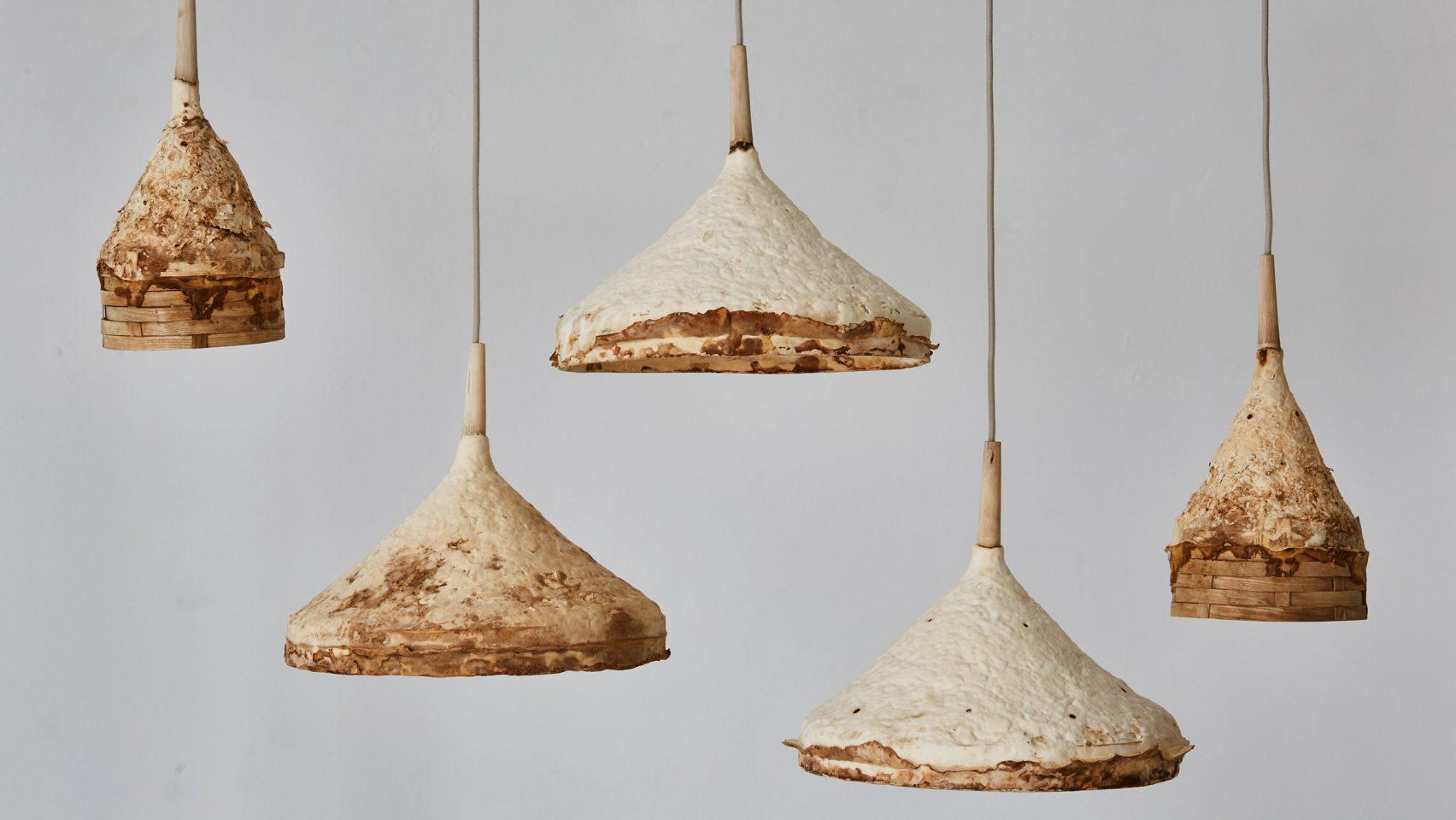 Sebastian Cox mushroom mycelium lights