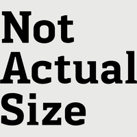Not Actual Size logo